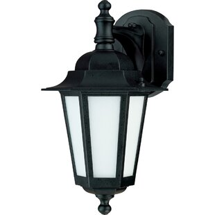 Reviews Mayer 1-Light Outdoor Wall Lantern By Alcott Hill