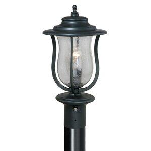 Corsica Outdoor  1-Light Lantern Head