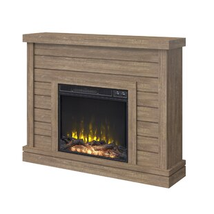 Fish Electric Fireplace by Breakwater Bay