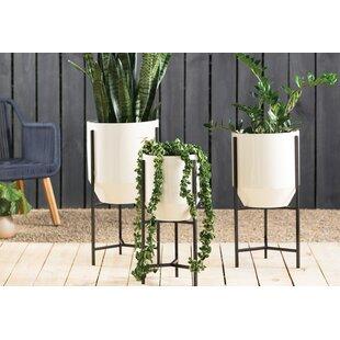 Modern 3 Planters Allmodern