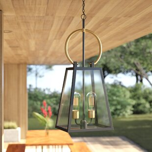Ricard 2-Light Outdoor Hanging Lantern