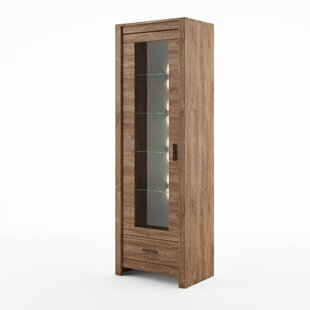 Saskia Display Cabinet With Lighting By Gracie Oaks