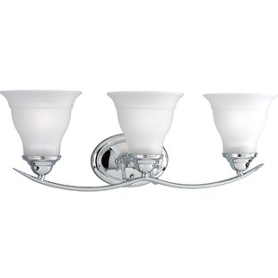 Charlton Home Roquefort 3-Light Glass Shade Vanity Light