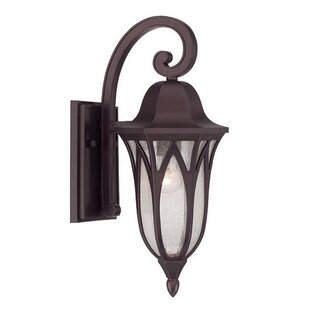 Besaw 1-Light Outdoor Wall Lantern