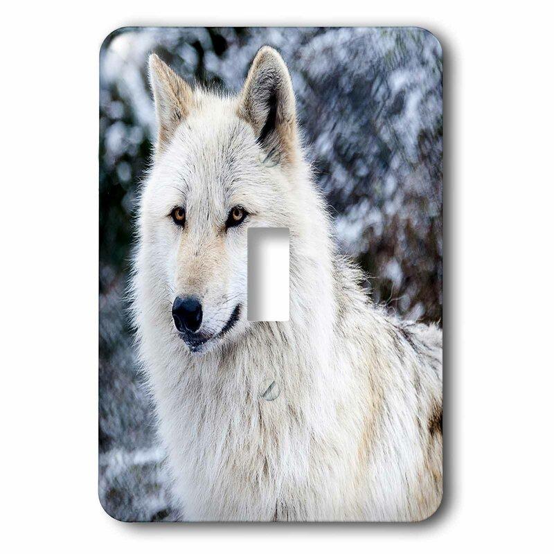 3drose Rocky Mountain Wolf 1 Gang Toggle Light Switch Wall Plate Wayfair