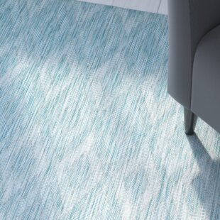 Brodie Aqua Indoor/Outdoor Area Rug by Langley Street