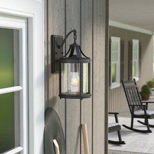 Halcott 1-Light Outdoor Wall Lantern