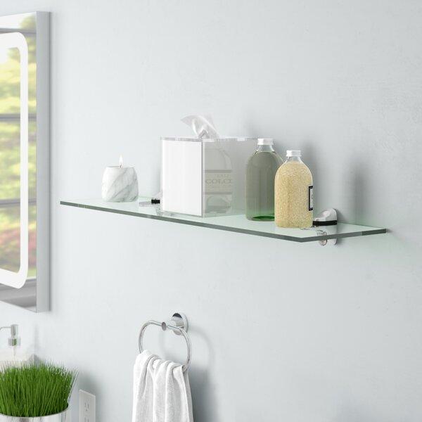 Groovy Clear Acrylic Floating Shelf Wayfair Interior Design Ideas Clesiryabchikinfo