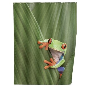 Shower Curtain Frog By Wenko Inc