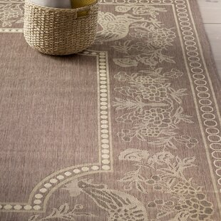 Margo Chocolate/Natural Indoor/Outdoor Area Rug