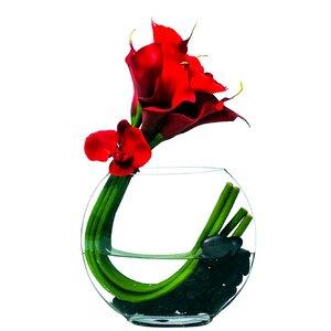 Calla Moon Lilies Floral Arrangement in Vase