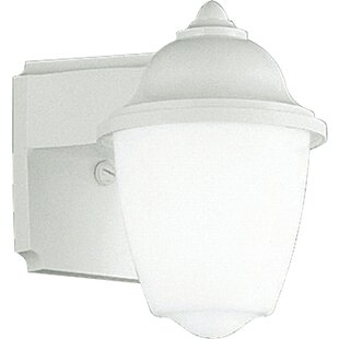 Winston Porter Malden 1-Light Outdoor Sconce