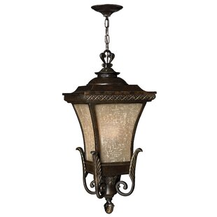 Comparison Brynmar 1-Light Outdoor Hanging Lantern By Hinkley Lighting