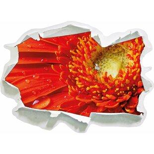 Red Flower Gerbera Sunshine Grass Flowers Wall Sticker By East Urban Home