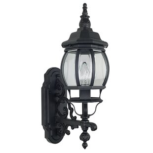 Astoria Grand Godbey 1-Light Outdoor Sconce