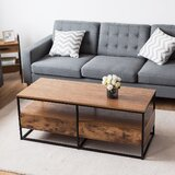 Pinehurst Frame Coffee Table with Storage by 17 Stories
