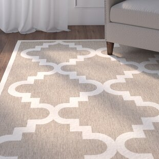 Short Ashton Brown/Beige Indoor/Outdoor Area Rug