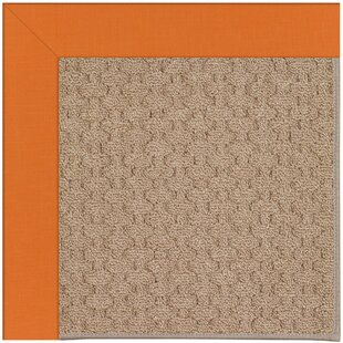 Lisle Machine Tufted Clementine/Brown Indoor/Outdoor Area Rug