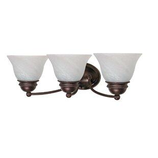 Charlton Home Poneto 3-Light Vanity Light
