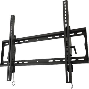 Wall Mount for 33 50 Screens