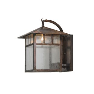 Shopping for 1-Light Outdoor Wall Lantern By Meyda Tiffany