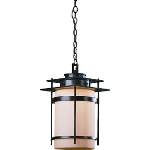 Guide to buy Orlean 1-Light Outdoor Pendant By Hubbardton Forge