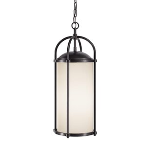Millwood Pines Espana 1-Light Outdoor Pendant