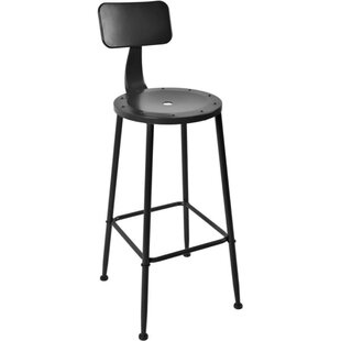 Michelle Steel Bar Stool (Set of 2) 17 Stories