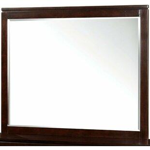 Latitude Run Robie Transitional Accent Mirror