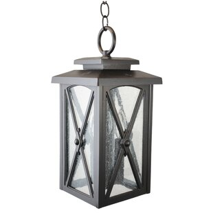 Alcott Hill Zebedee 1-Light Outdoor Hanging Lantern