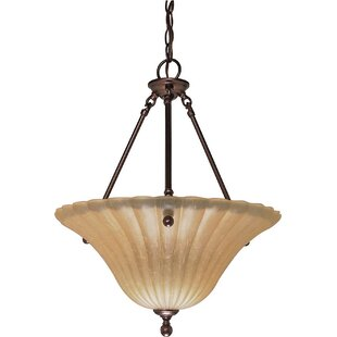 Fleur De Lis Living Caverly 3-Light LED Bowl Pendant