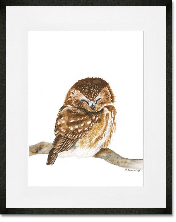 Oopsy Daisy Sleeping Baby Owl By Brett Blumenthal Framed Painting Print Wayfair