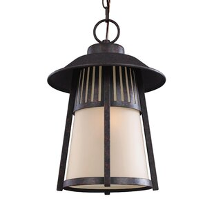 Purchase Burkettsville 1-Light Outdoor Pendant By Darby Home Co
