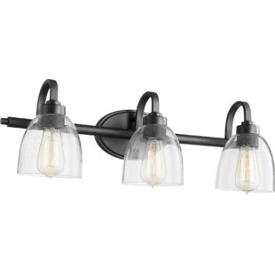 Andover Mills Edie 3-Light Vanity Light