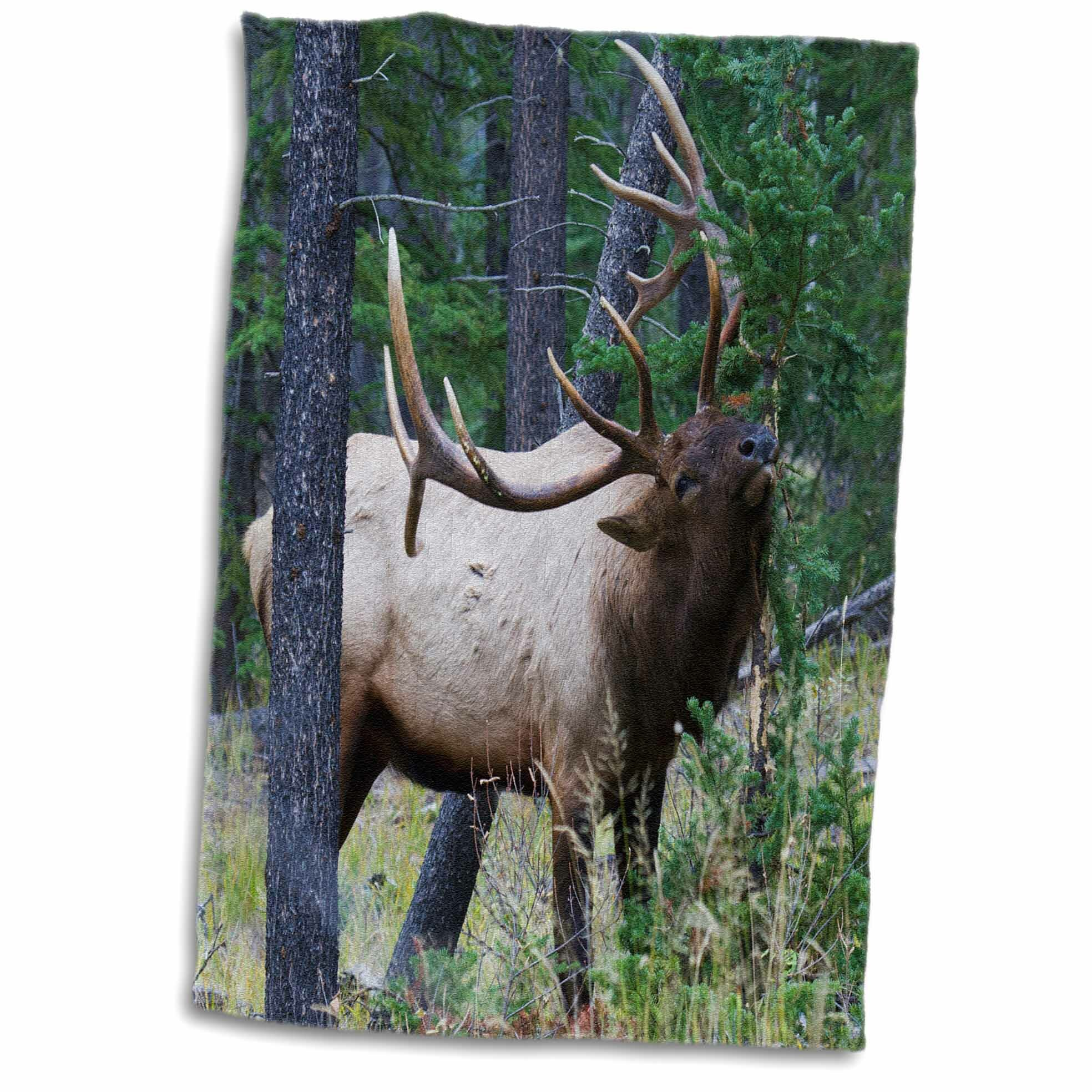 100/% Cotton Christmas Tree Deer Elk Absorbent Children Kid Baby Hand Face Towel