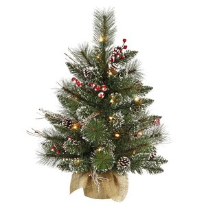 2' Snow Green Tipped Pine and Berry Artificial Christmas Tree with 35 Clear Lights with Stand