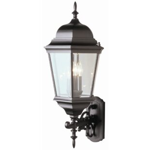 Big Save Fairweather 3-Light Outdoor Sconce By Darby Home Co