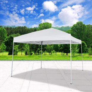 10 Ft. W x 10 Ft. D Steel Pop-Up Party Tent by Cloud Mountain Inc.