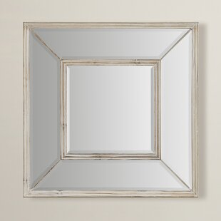 Warwick Wall Mirror by Rosecliff Heights