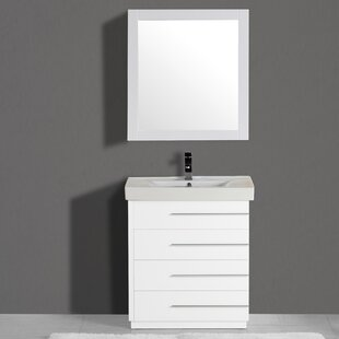 https://secure.img1-fg.wfcdn.com/im/94919899/resize-h310-w310%5Ecompr-r85/2788/27885714/carlo-30-single-vanity-set-with-mirror.jpg