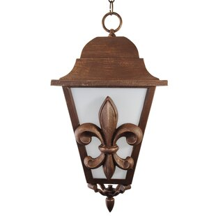 Alcott Hill Penfield 3-Light Outdoor Hanging Lantern