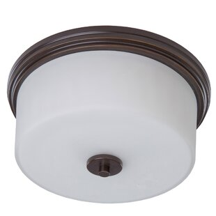Review Gerald 2-Light Flush Mount by Darby Home Co