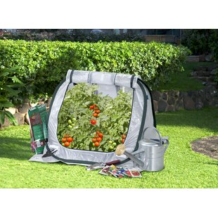 Flowerhouse SeedHouse Jr. 2.5 Ft. W x 2.5 Ft. D Mini Greenhouse