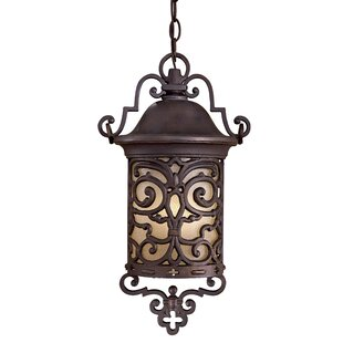 Chelesa Road 1-Light Outdoor Hanging Lantern