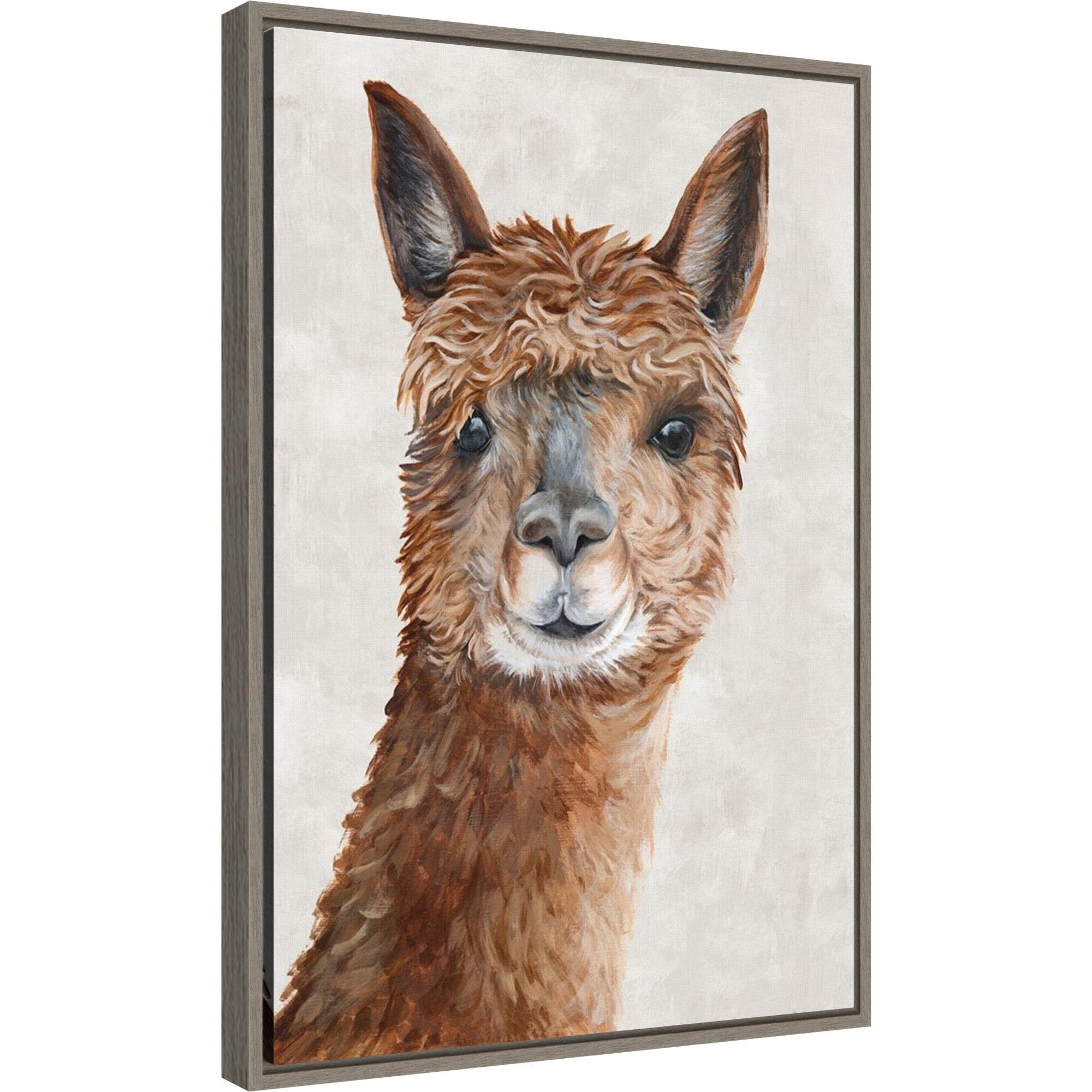 Bloomsbury Market Suri Alpaca Ii By Eva Watts Floater Frame Painting Print On Canvas Wayfair