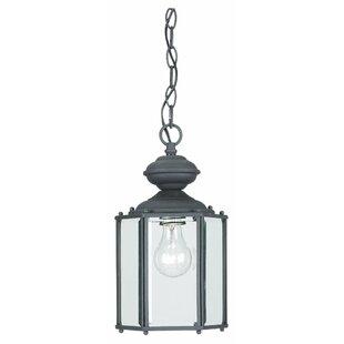 Alcott Hill Raven 1-Light Outdoor Hanging Lantern