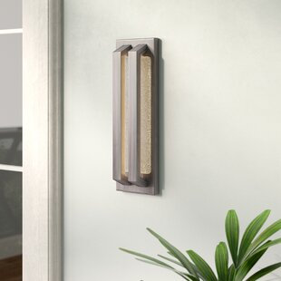 Brayden Studio Brill 1-Light Outdoor Sconce