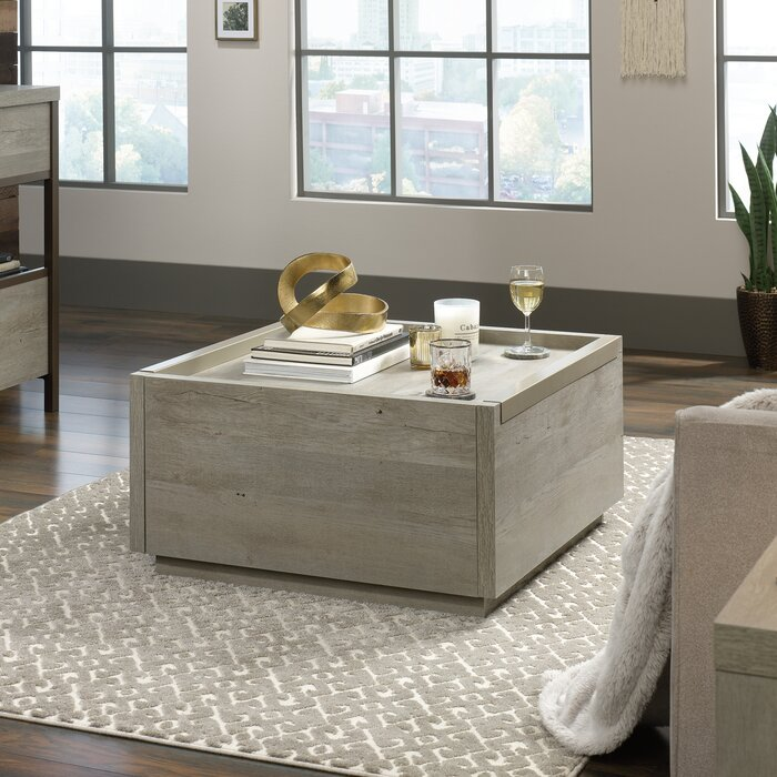 Super Tylor Coffee Table With Storage Evergreenethics Interior Chair Design Evergreenethicsorg