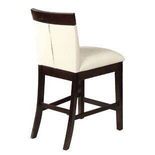 Birney Dining Chair (Set of 2) by Wrought..