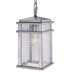 Divya 1-Light Outdoor Hanging Lantern